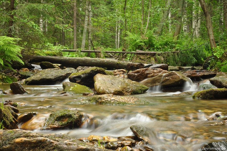 Шунут и источник Платонида: Активный тур на природу