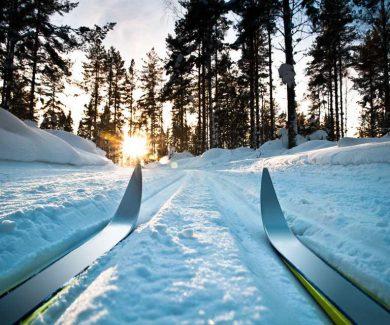 Лыжный тур Оленьи Ручьи Сказка в зимнем лесу